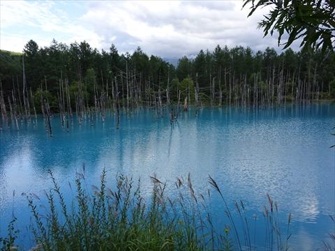 170826-52青い池.jpg
