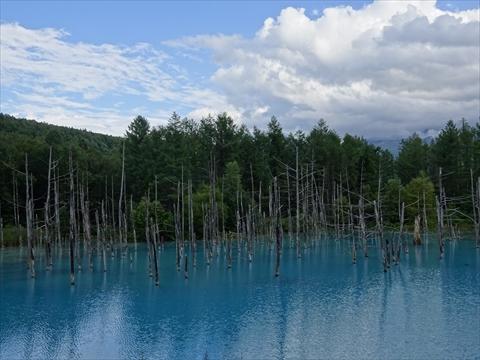 170826-53青い池.jpg