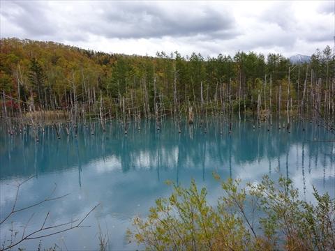 171007-60青い池.jpg