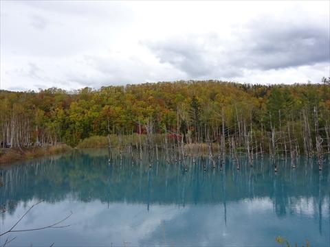 171007-61青い池.jpg