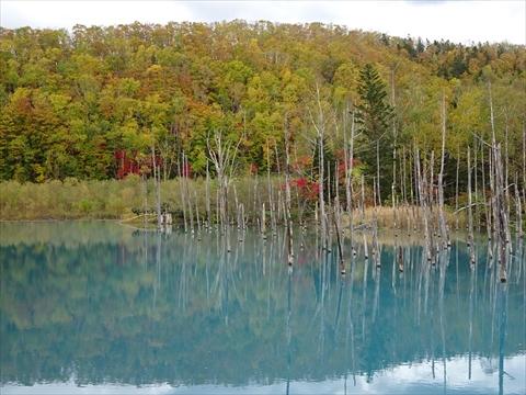 171007-62青い池.jpg
