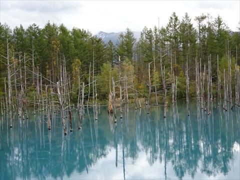 171007-63青い池.jpg