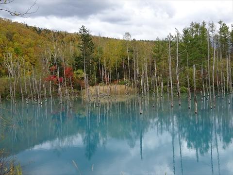 171007-65青い池.jpg
