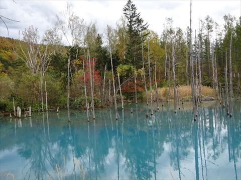 171007-66青い池.jpg