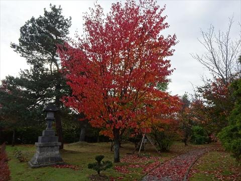 171007-85美瑛神社.jpg
