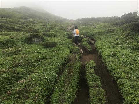 180721-18富良野岳.jpg