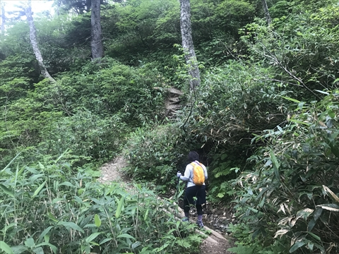 180804-10夕張岳(前岳の沢).jpg