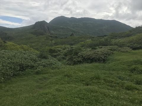 180804-23夕張岳(前岳湿原).jpg