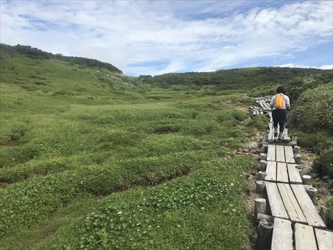 180804-31夕張岳(1400m湿原).jpg