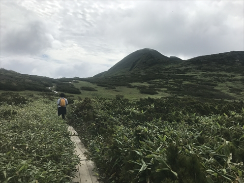 180804-32夕張岳(1400m湿原).jpg