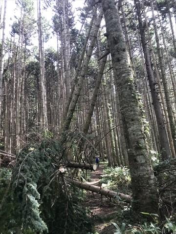 180916-02札幌岳.jpg