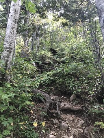 180916-08札幌岳.jpg