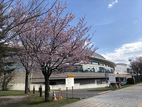 190428-08豊平公園.jpg