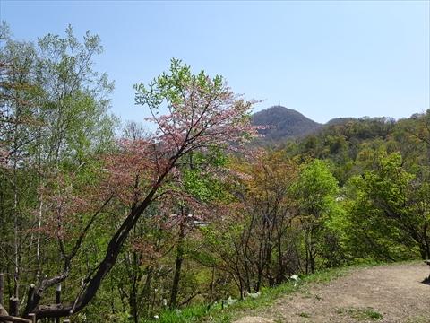 190505-6藻岩山.jpg