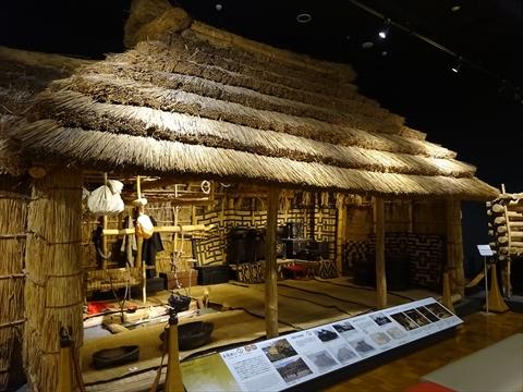 190506-8北海道博物館.jpg