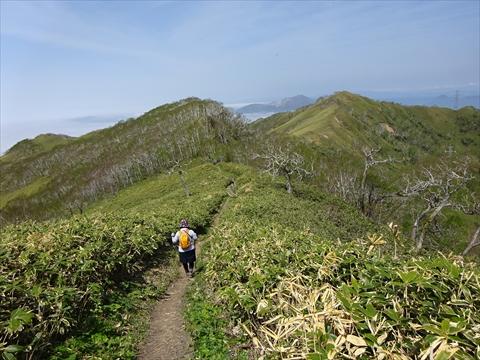 190518-33伊達紋別岳.jpg