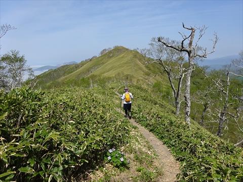 190518-42伊達紋別岳.jpg