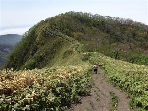 190518-49伊達紋別岳.jpg