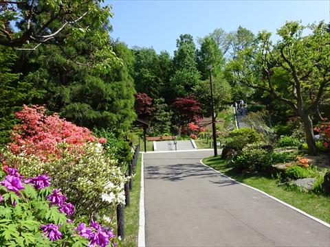 190525-14天神山緑地.jpg