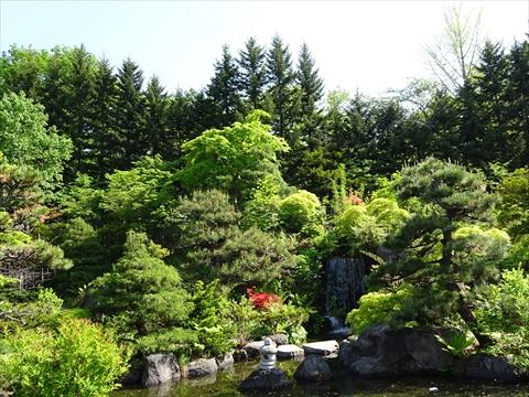 190525-17天神山緑地.jpg