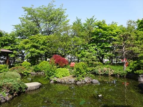 190525-18天神山緑地.jpg