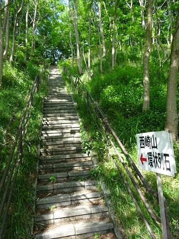 190623-02西崎山環状列石.jpg