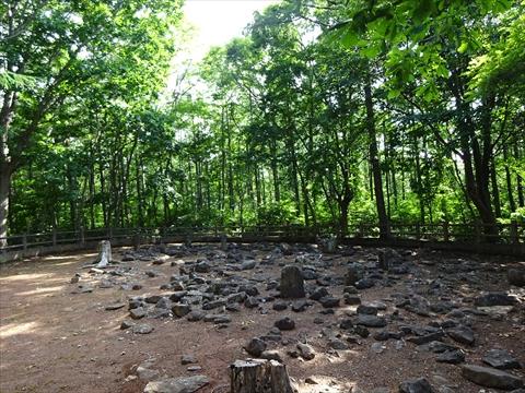 190623-03西崎山環状列石.jpg