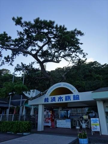 190909-63桂浜.jpg
