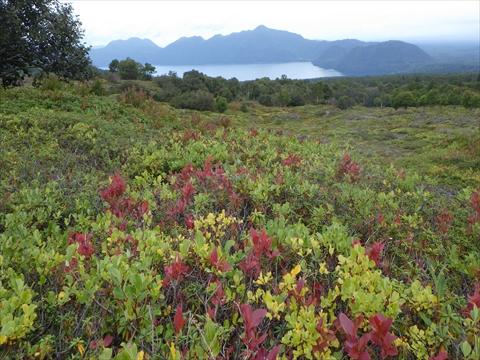 190922-03樽前山.jpg