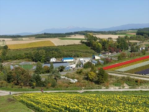 190928-44四季彩の丘.jpg