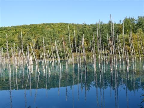 190928-60青い池.jpg