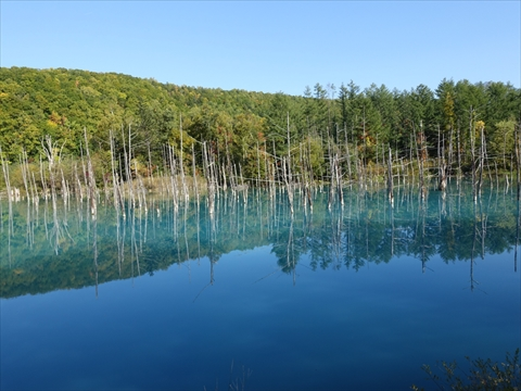 190928-61青い池.jpg