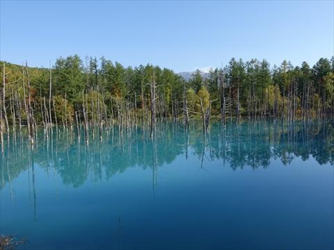 190928-63青い池.jpg