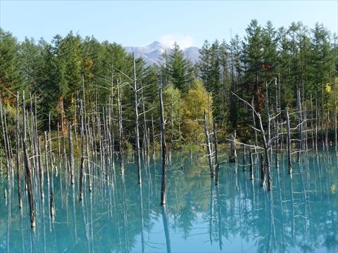 190928-64青い池.jpg