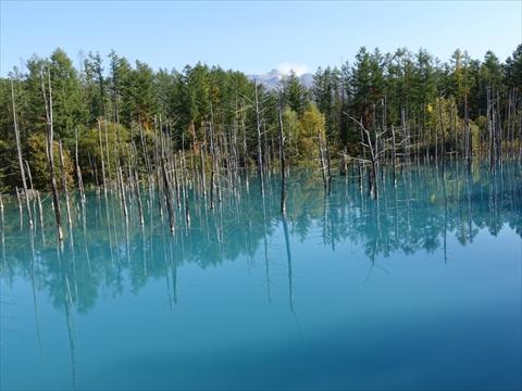 190928-65青い池.jpg