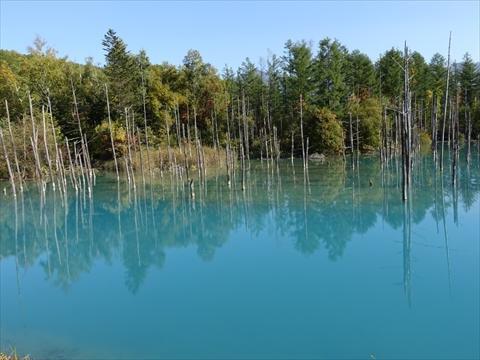 190928-67青い池.jpg