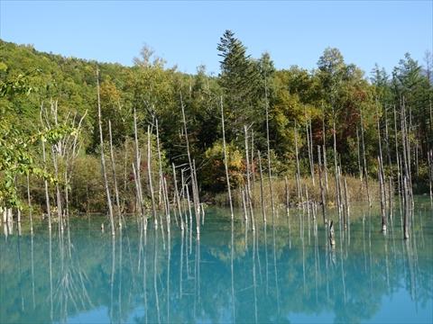 190928-68青い池.jpg