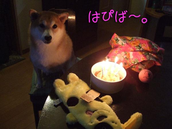 6歳おめでとう!