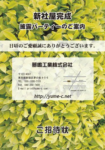 カラー招待状 表紙 DM-F1