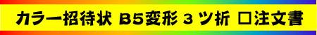 カラー招待状 B5変形 3ツ折 □注文書(PDF)