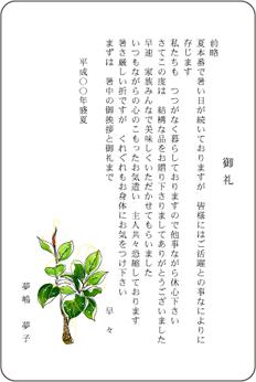 単カードデザイン<CT1012>