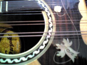 suzuki mandolin No206 その2