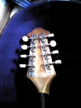 suzuki mandolin No206 その4