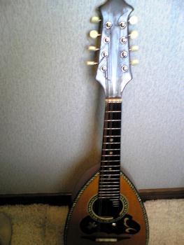 suzuki mandolin No206 その6