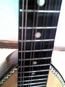 suzuki mandolin No206 その8