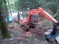 森林伐採2
