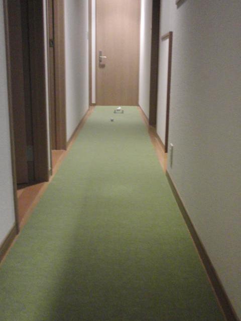廊下にぴったりのパターマット