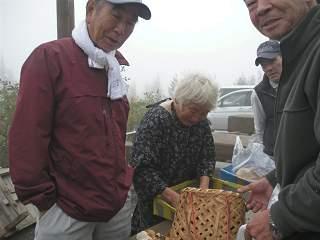 日本(椎茸・おばあさん)