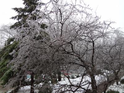 ice weather