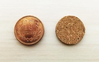 10円玉インシュレーター1